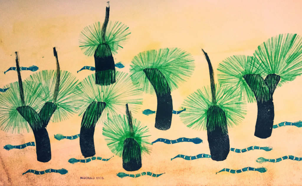 Grass trees and Tiger Snakes
